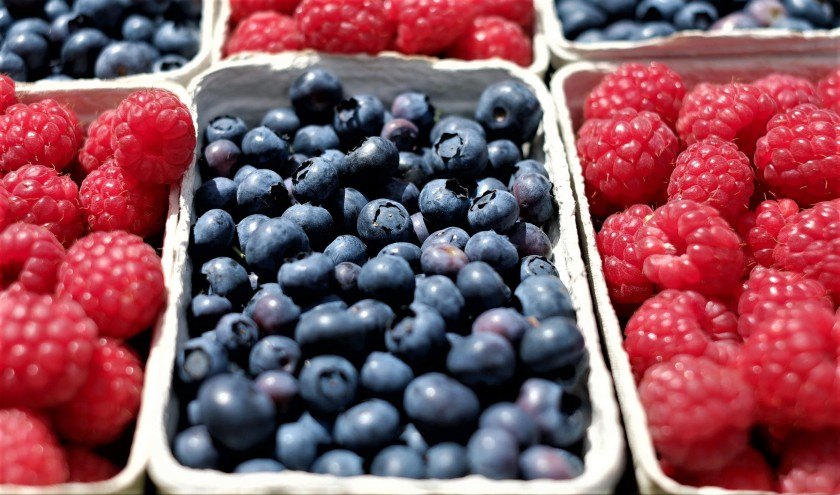 berries-blueberries-raspberries-fruit-122442 (2)